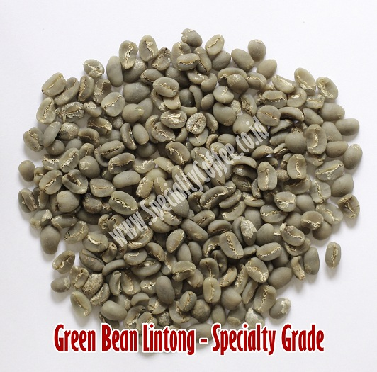 Green Bean Lintong