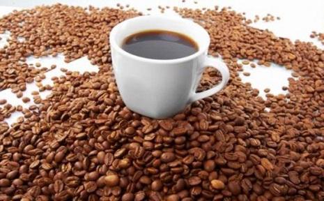 suplai kopi untuk cafe